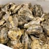 東京のおすすめ牡蠣食べ放題の店まとめ12選【生牡蠣や安い店も】